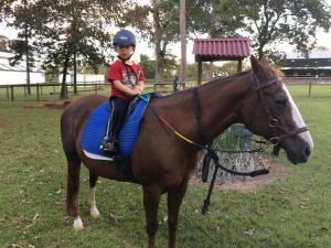 Eli Rutgers horse